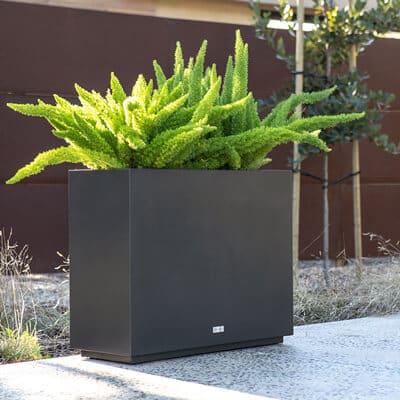 jardinière rectangulaire haute noire lifestyle