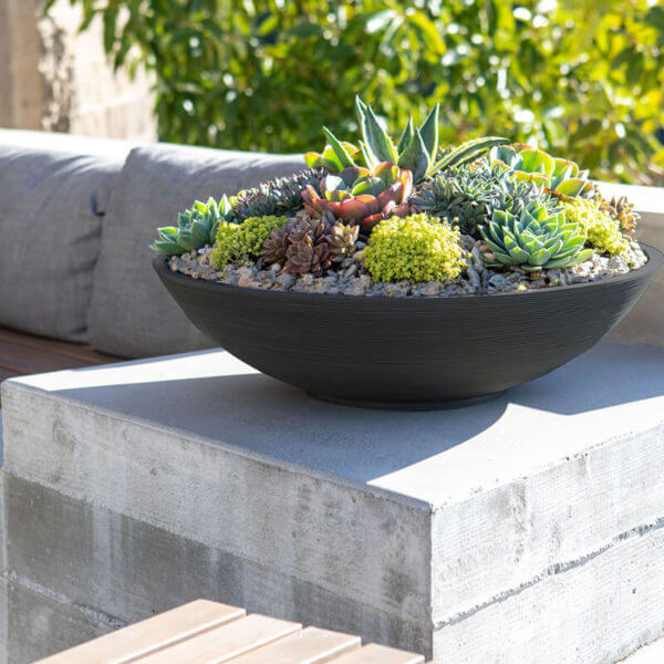 jardinière bol noire lifestyle