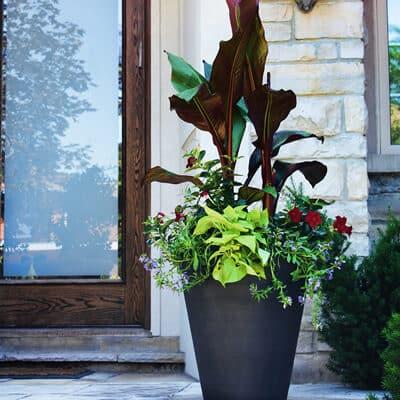 jardinière conique noir lifestyle